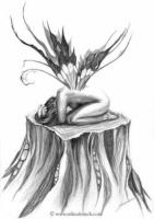 leena-macdonald