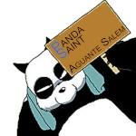 Panda Saint