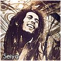 Seiya [NX]