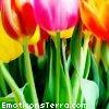eethome