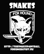 - Snk - Nico (FoxHound)