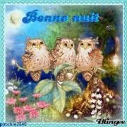 """""""Bonjour / Bonsoir"""" !!! - Page 38 2048454841"""