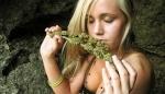 NaTuraL/Weed