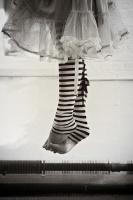 Fallen_Butterfly