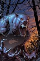 Lobo da Furia