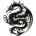 dragon41600