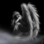 RBR Angel