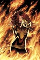 dark phoenix105