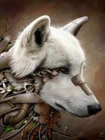 Hattassu Darkwolfe