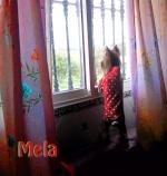 Melitere