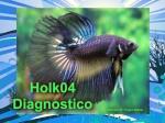 Holk04