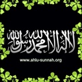 Muwehhid