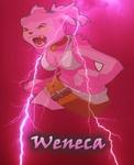 wen's