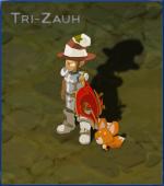 Tri-Zauh