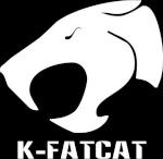 K-Fatcat