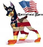 BattleFieldHero