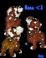 nana991