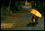 .žuti.kišobran.