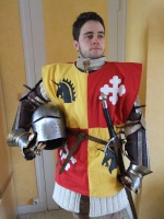 Robin des buissons