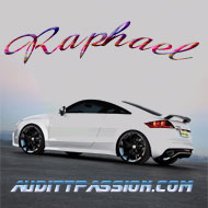 raphael50