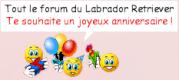 Joyeux anniversaire Nathalie ! 56515