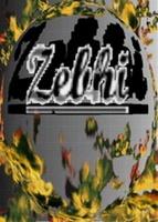 zhe_virgo