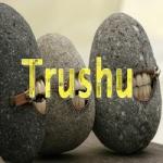 Trushu [2fast4U]