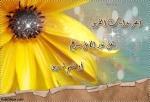 ياسمين الشام