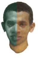 حذيفة احمد