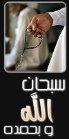 arab net world