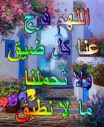 karim@