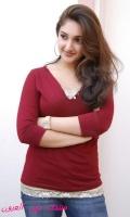 noor203