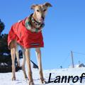 Lanrof