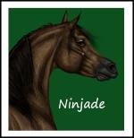 Ninjade