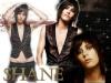 Shane32