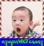 _nguyenVIETchung_