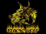 black_wolf523