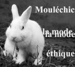 Mouléchic