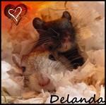 Delanda