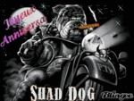 shad dog