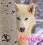 Seraphia