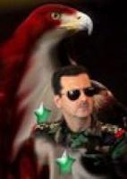 عمري للأسد