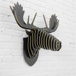 moose9144