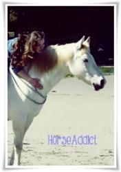HorseAddict