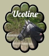 Ucotine