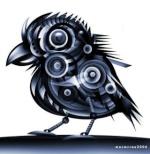cuervo-ebon