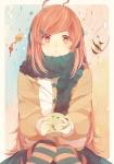 Ichigo0SweetGirla71