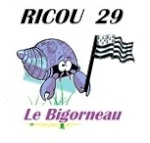 Ricou 29