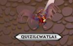 QuizHyper