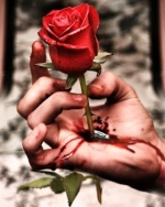 ساقي الورد